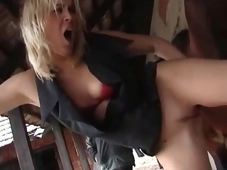 video xxx porno animal movies