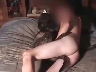 free male beast porn movies