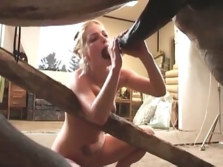 beastialty tgp porn videos