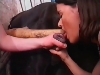 sextoons animals porn videos